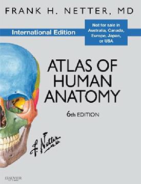 ATLAS HUMAN OF ANATOMY