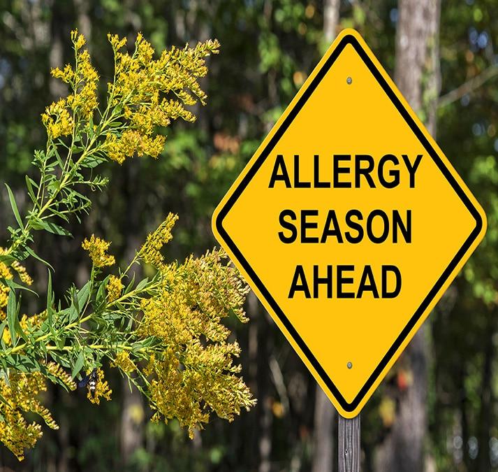 סובלים מאלרגייה? כך הנטורופתיה יכולה לעזור